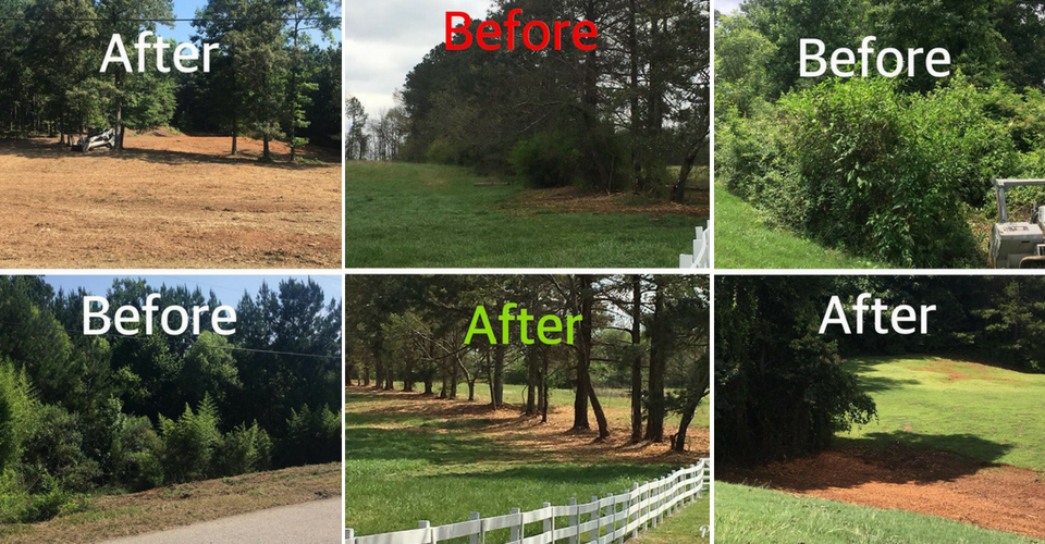 Before & After of land clearing